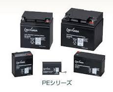 PE12V24B1 GSユアサ製 電池・充電器(標準タイプ) 12V/24Ah GSユアサ
