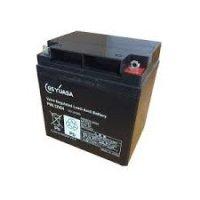 PE12V12F2 GSユアサ製 畜電池・バッテリー(標準タイプ) 12V/12Ah GSユアサ