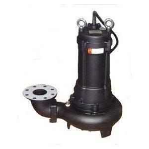 画像1: DSN-40AT 水中ノンクロッグポンプ 着脱タイプ 桜川ポンプ製作所